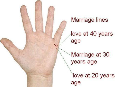 Love Lines This Line Is Also Called As Marriage Line Palmistry