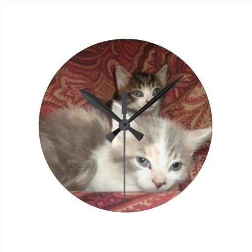 Comfy Kitties Clock! #cute #kitten #zazzle #store #cat #meow #customize #gift #present http://www.zazzle.com/conquestkitty*
