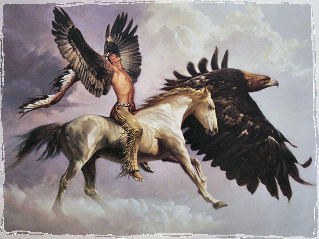 Popular Wallpaper Horse Eagle - 38848f50f59f35f46555e5ca56078e8b  2018_573199.jpg