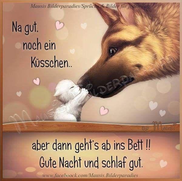 Photo of Guten Morgen gb – beste Pins