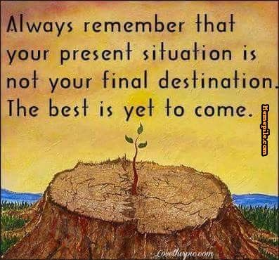 Present Situation Is Not Your Final Destination Memes Memepile Com Search Millions Of Daily Trending Memes The Best Is Yet To Come Bear Quote Yet To Come