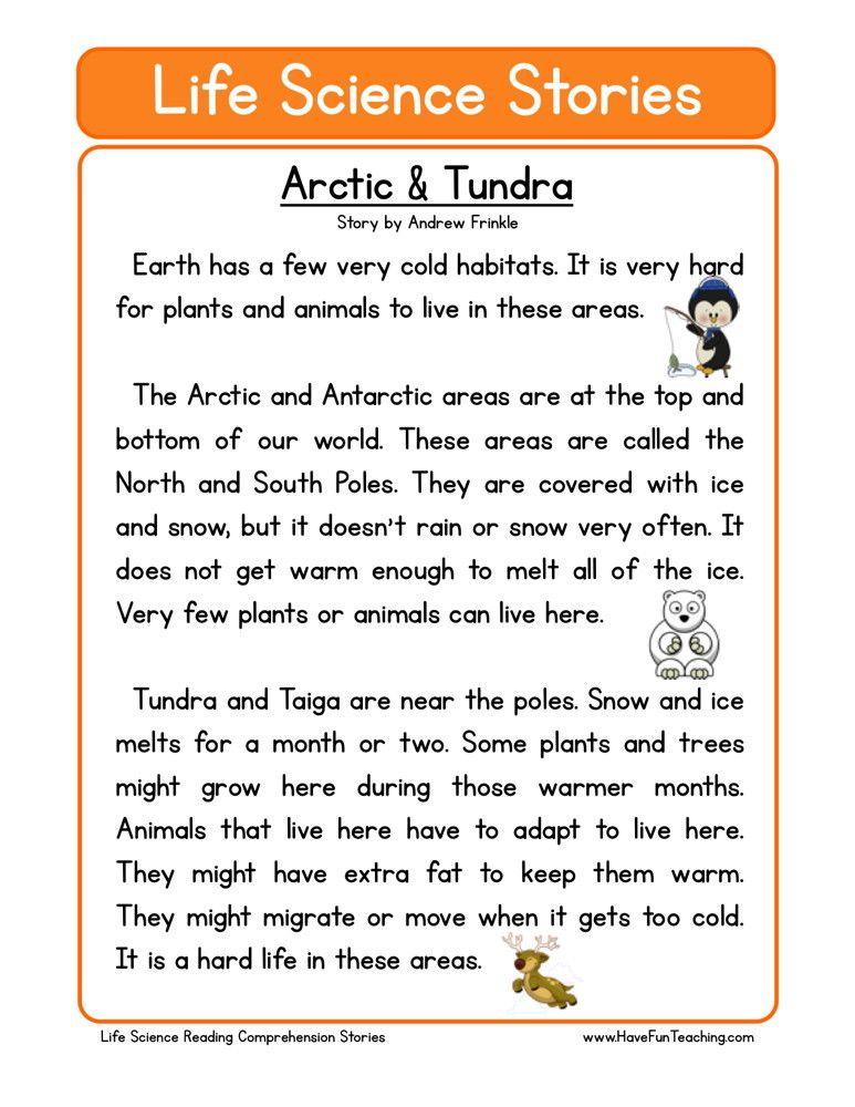 Arctic Tundra Gift Of Education Pinterest Arctic Tundra
