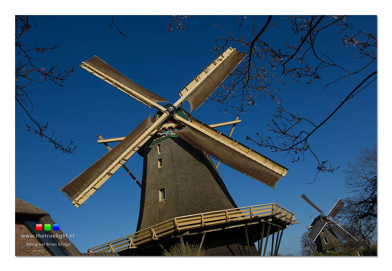 Everybody loves Windmills!  Here are two!