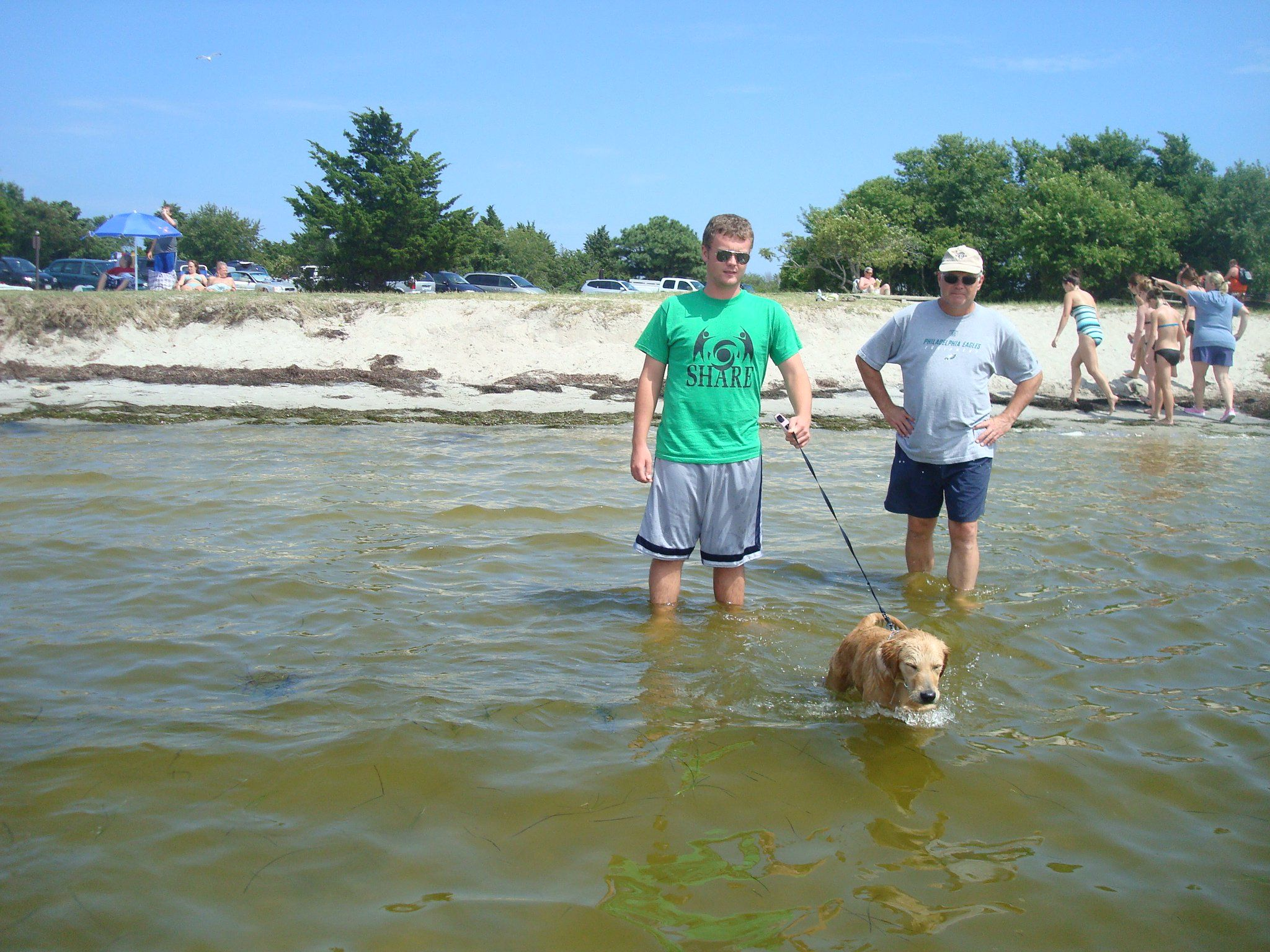 Dogs are allowed on the beach along the Maryland portion