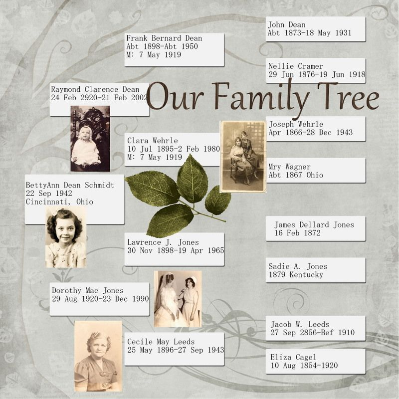 Family Tree | Scrapbook Your Family Tree | Pinterest | Family ...
