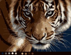 Тигр (10цв.) | Картина с тигром, Картины животных, Животные