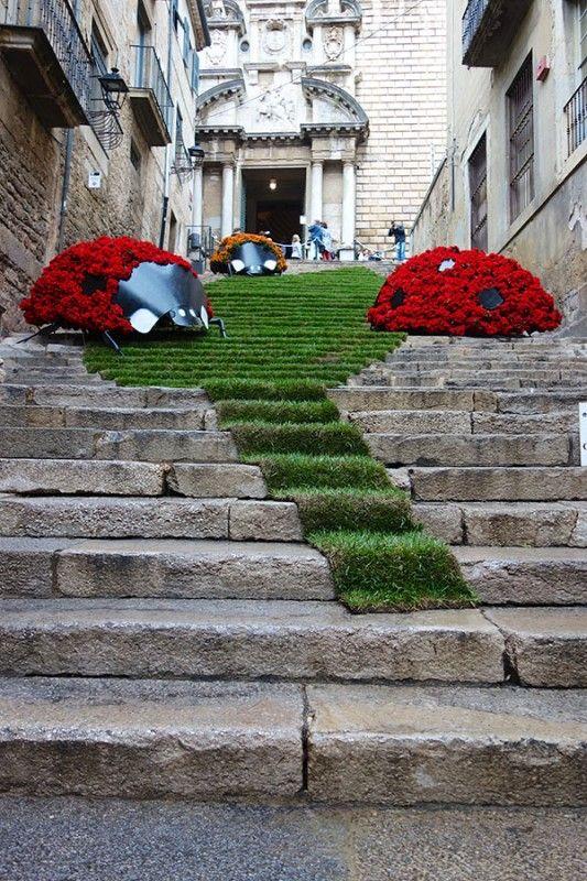 Flower festival Girona bugs Eclectic