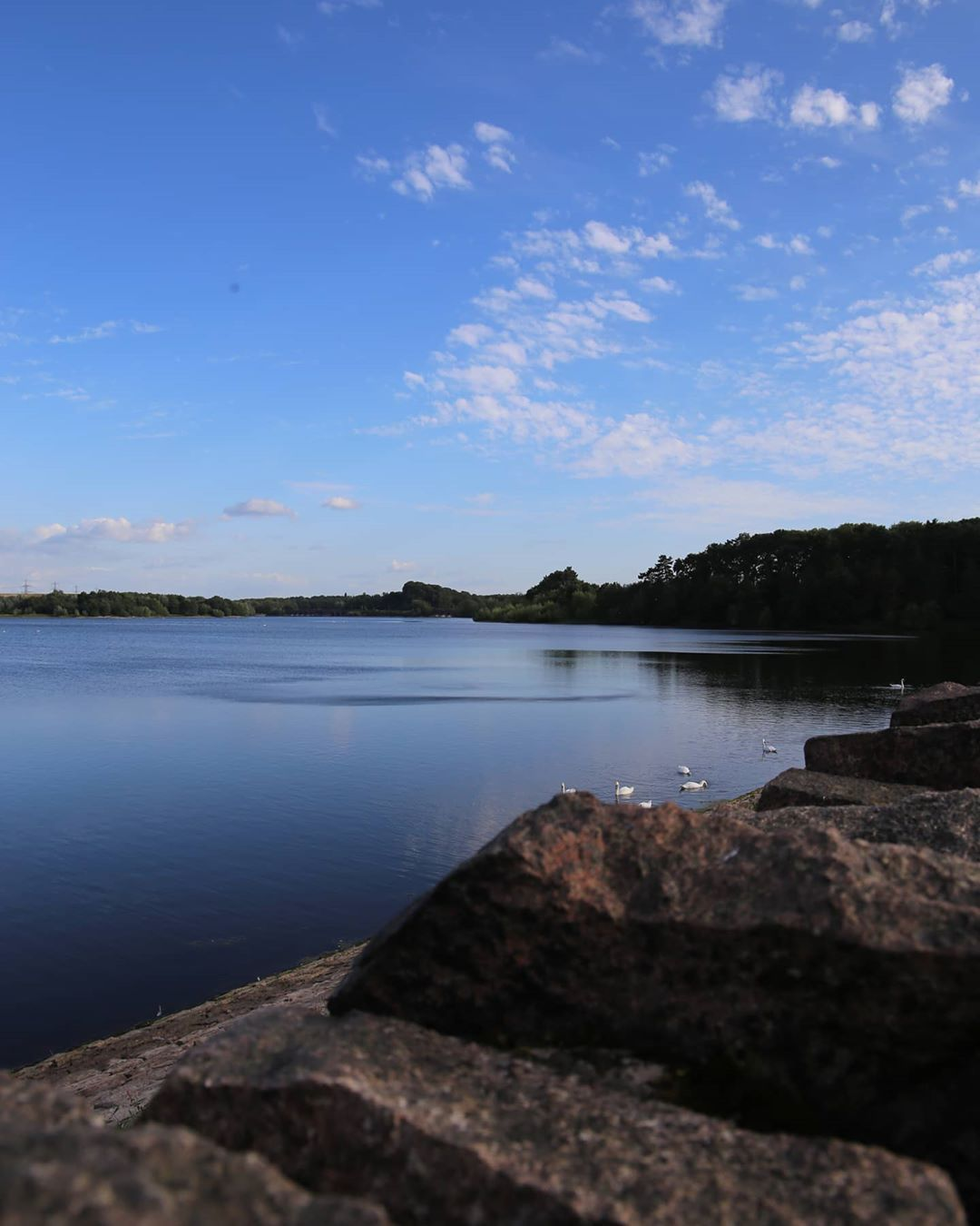 Unedited Image At Swithland Reservoir Unedited Uneditedphoto Raw Canon Beauty Nature Scenic Scenicphotography L In 2020 Scenic Photography Photography Scenic