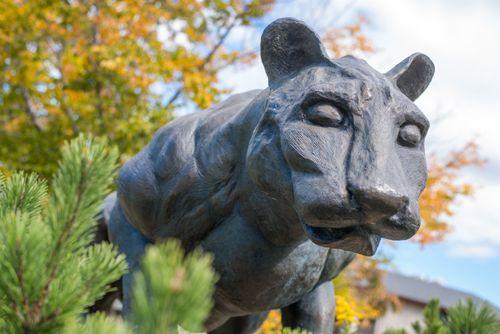 Mountain Cat Lion Sculpture Johnstown University Of Pittsburgh