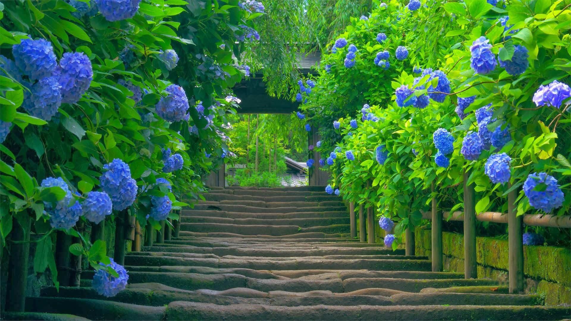 Yes Please Backyard Landscaping Designs Backyard Design Backyard