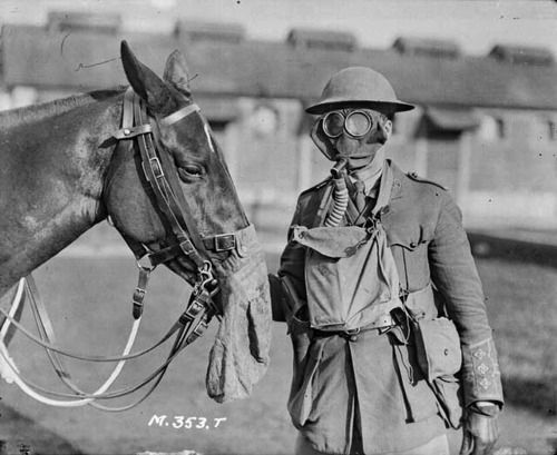 Canadian soldier and his horse demonstrating their gas masks.