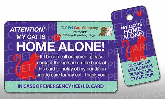 CAT HOME ALONE Plastic Pet Dog Alert Emergency I.D. Identification ...