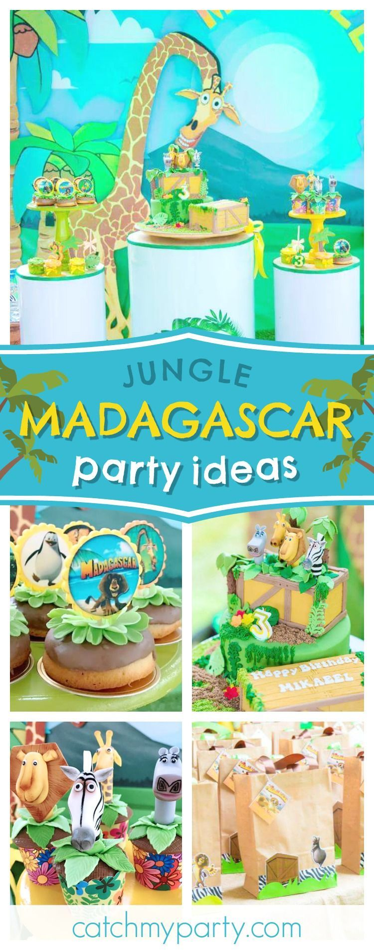 Madagascar Birthday Mikaeel S Party In The Jungle