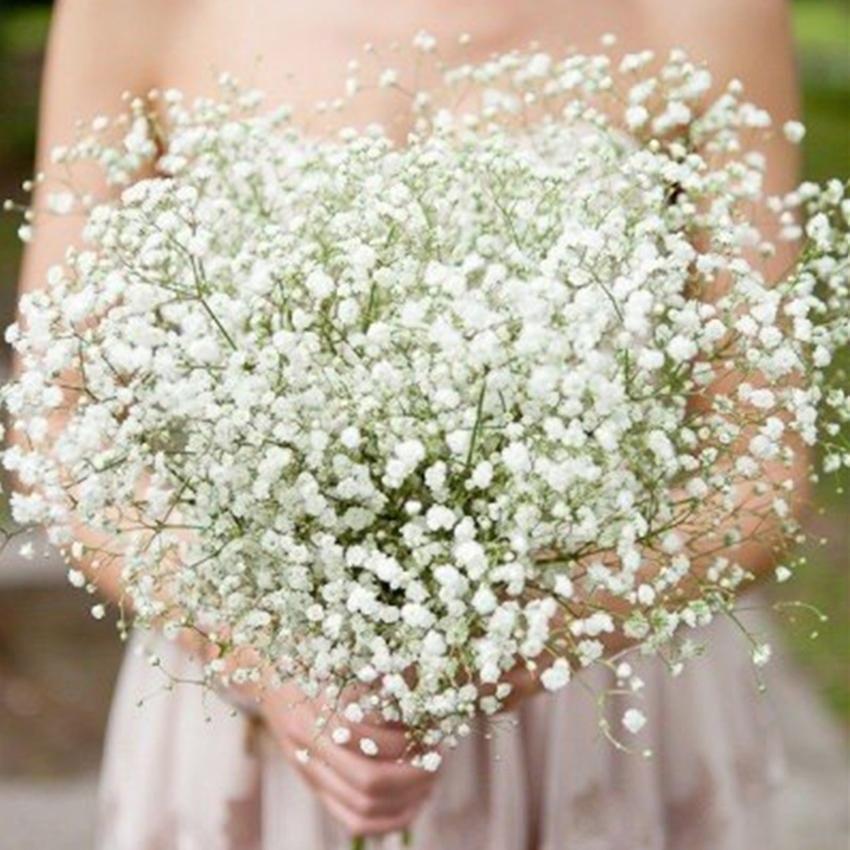 Gypsophila Baby S Breath Artificial Fake Silk Flower Plant Home Wedding Decor Wedding Bouquets Bride Silk Flowers Wedding Cascading Wedding Bouquets