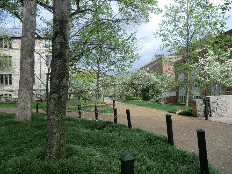 Vanderbilt Law School In The Spring Gorgeous Law School Favorite Places Vanderbilt