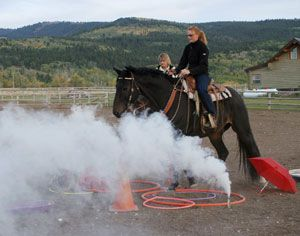 horse desensitization techniques used by the Jackson Hole Police Citizens' Mounted Unit for mounted patrol training