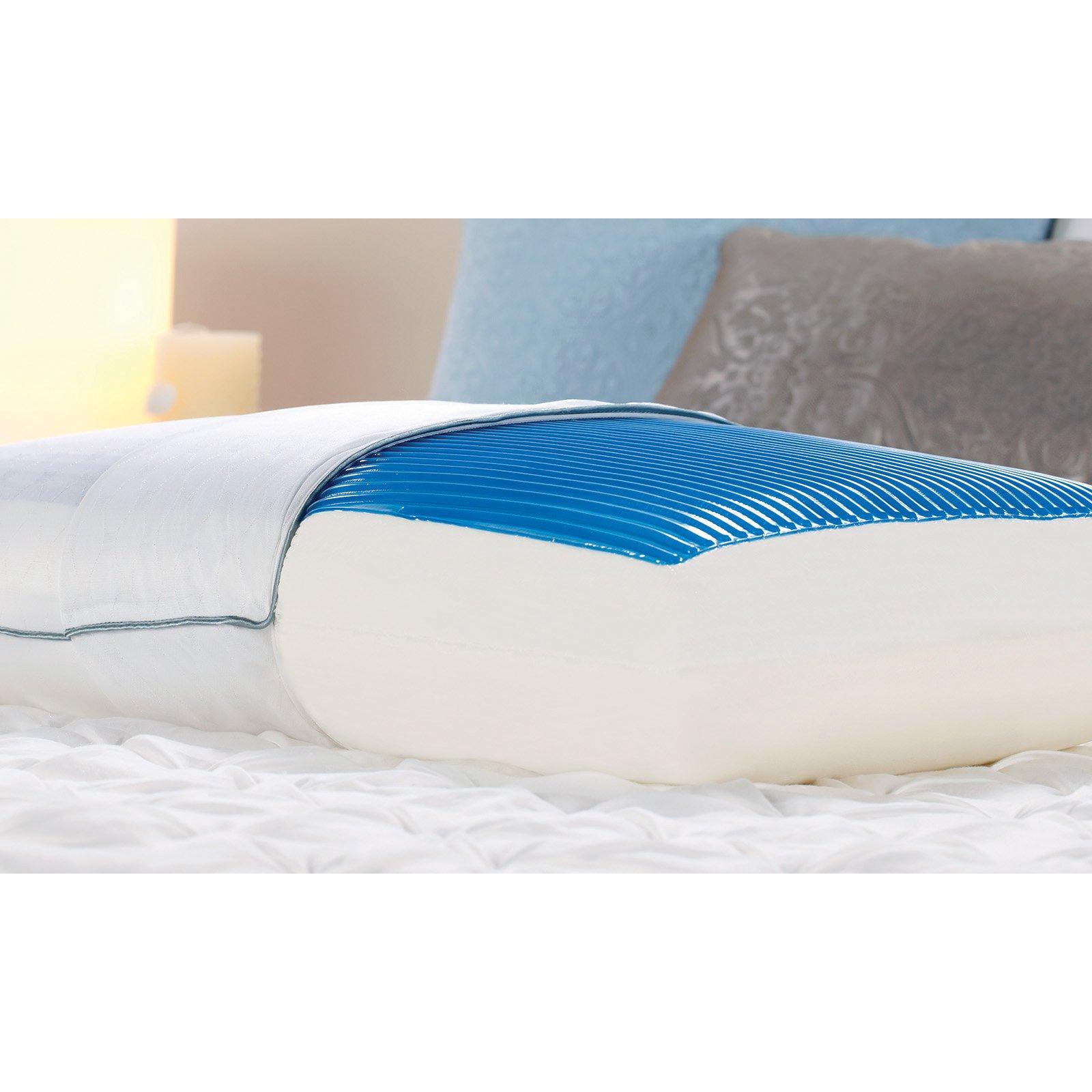 Sealy Memory Foam & Hydraluxe Gel Bed Pillow in 2019