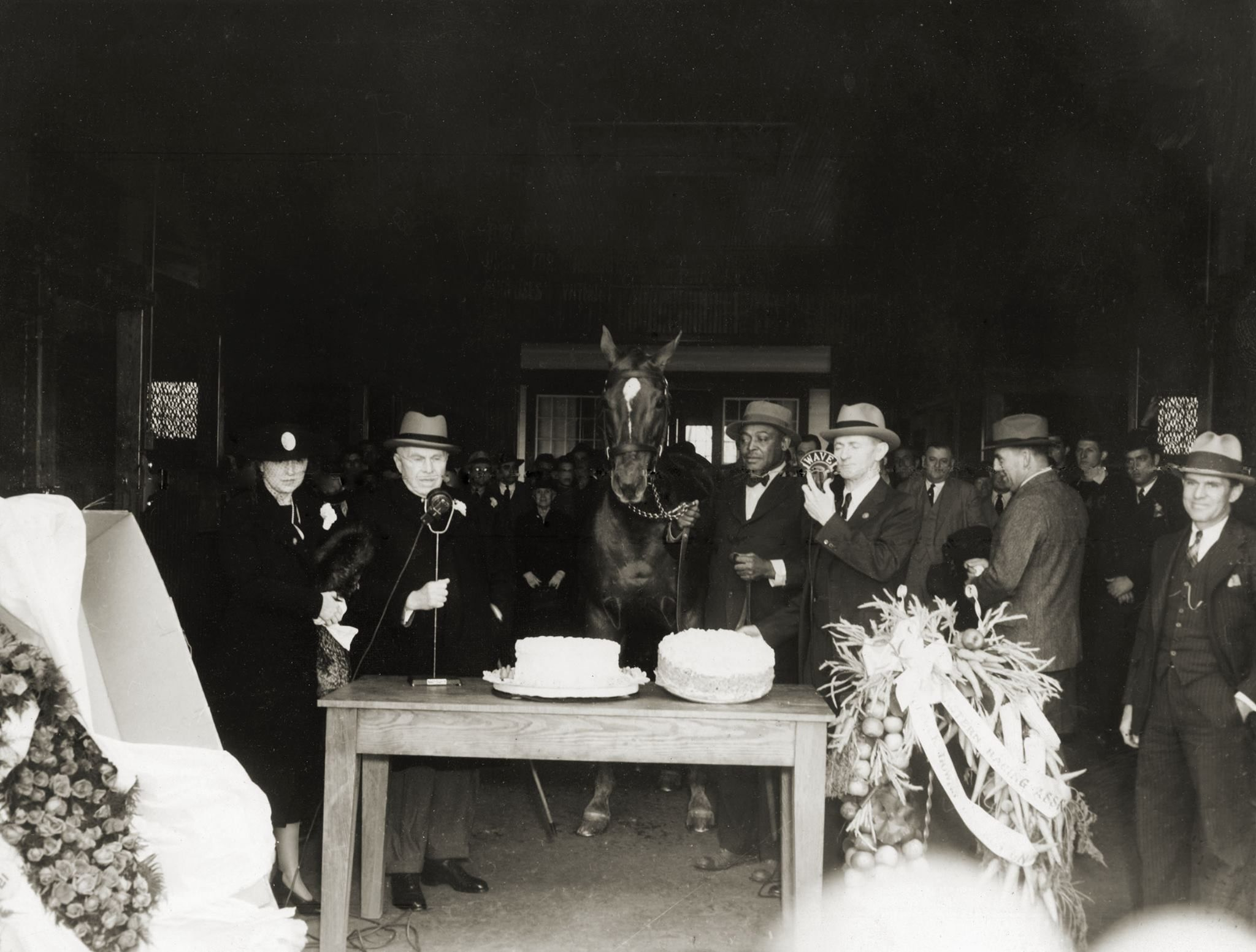This is a photo of Man o' War's 21st birthday party held