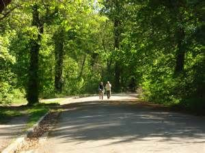 Vintage Memphis Overton Park - Bing Images