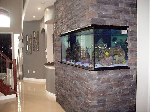 Built In Fishtank Wall Aquarium Aquarium Aquarium Design