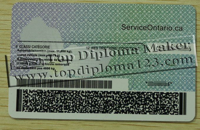Canada driver's licence, Ontario driver's licence | Buy