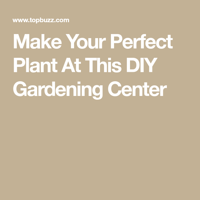 Make Your Perfect Plant At This DIY Gardening Center