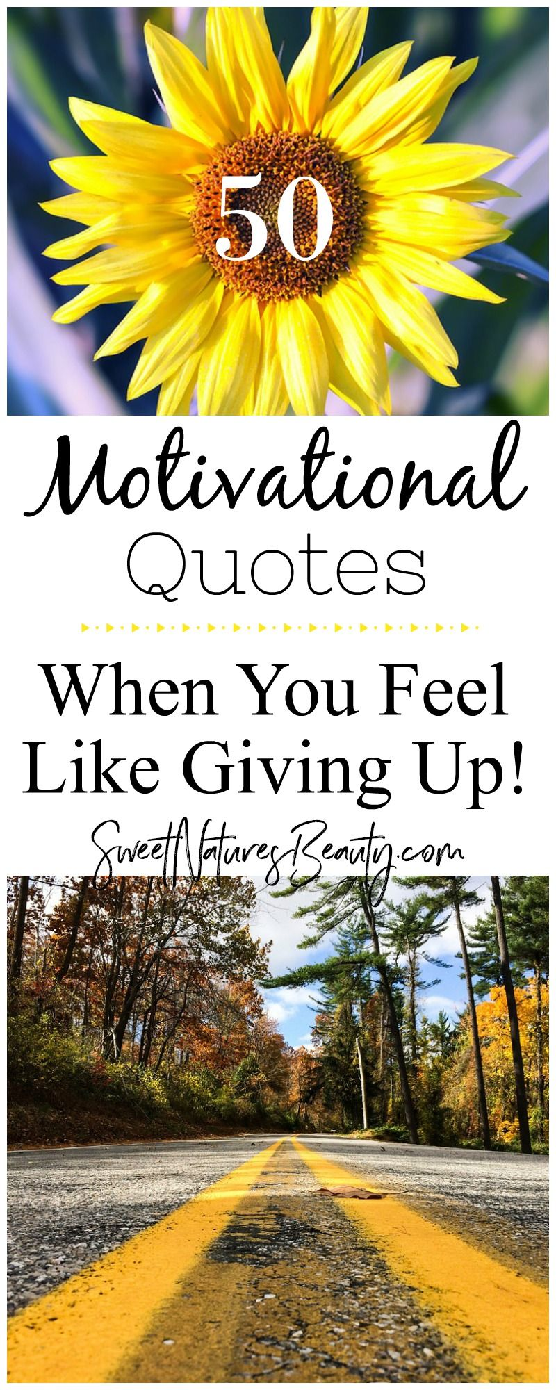 50 Motivational Quotes for When You Feel Like Giving Up