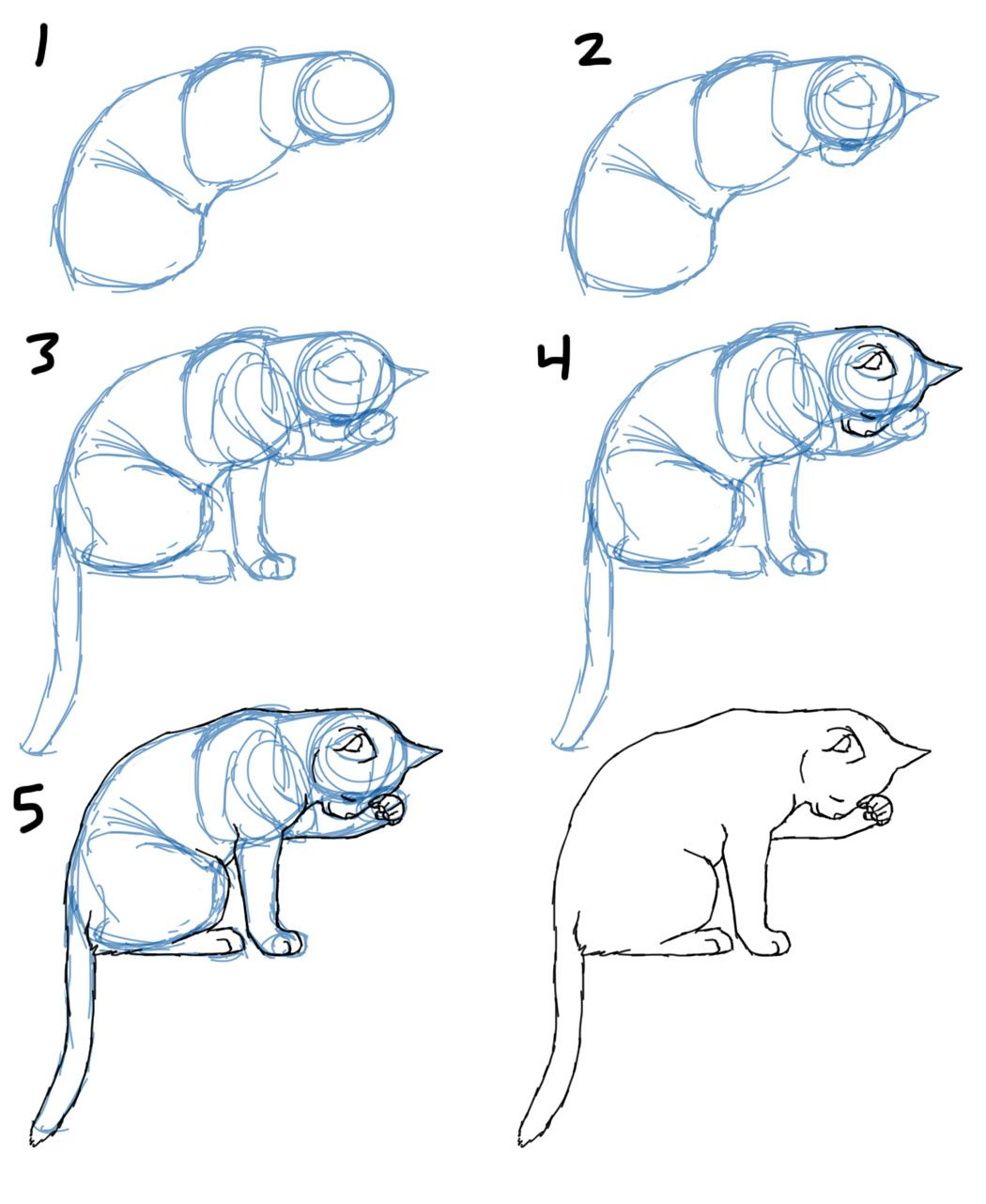 How to draw cat bodies in poses savanna williams gesture poses pinterest dessin dessin - Desin de chat ...