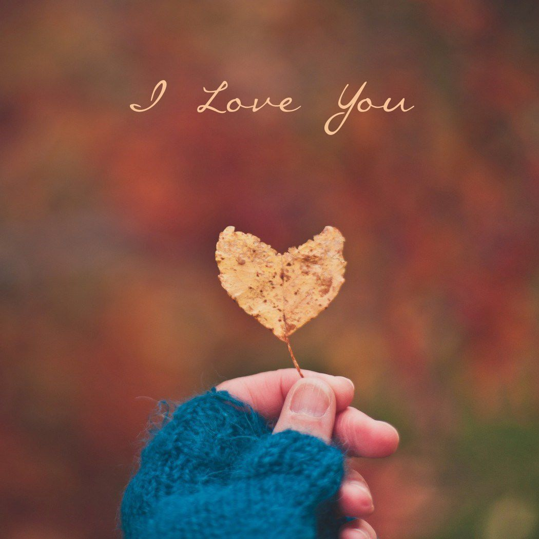 I Love You Mobile Wallpaper And Whatsapp Dp Love Romance