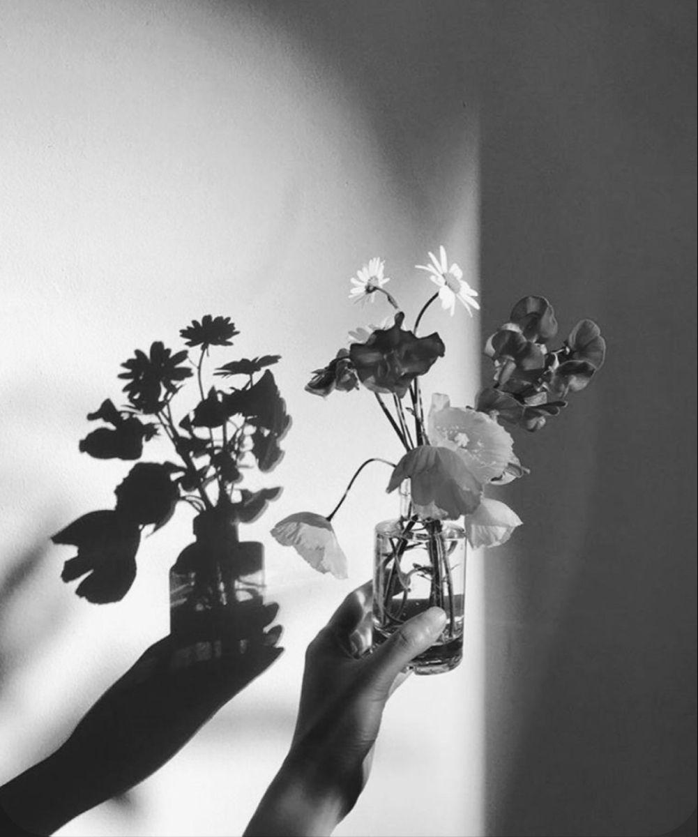 Flowers and Shadow
