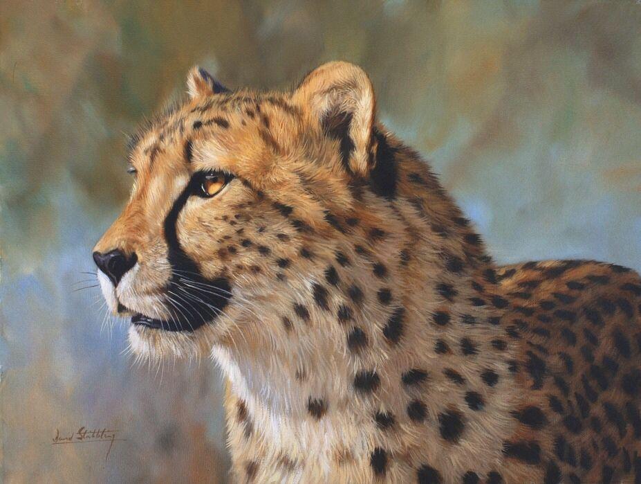 David Stribbling wildlife Art