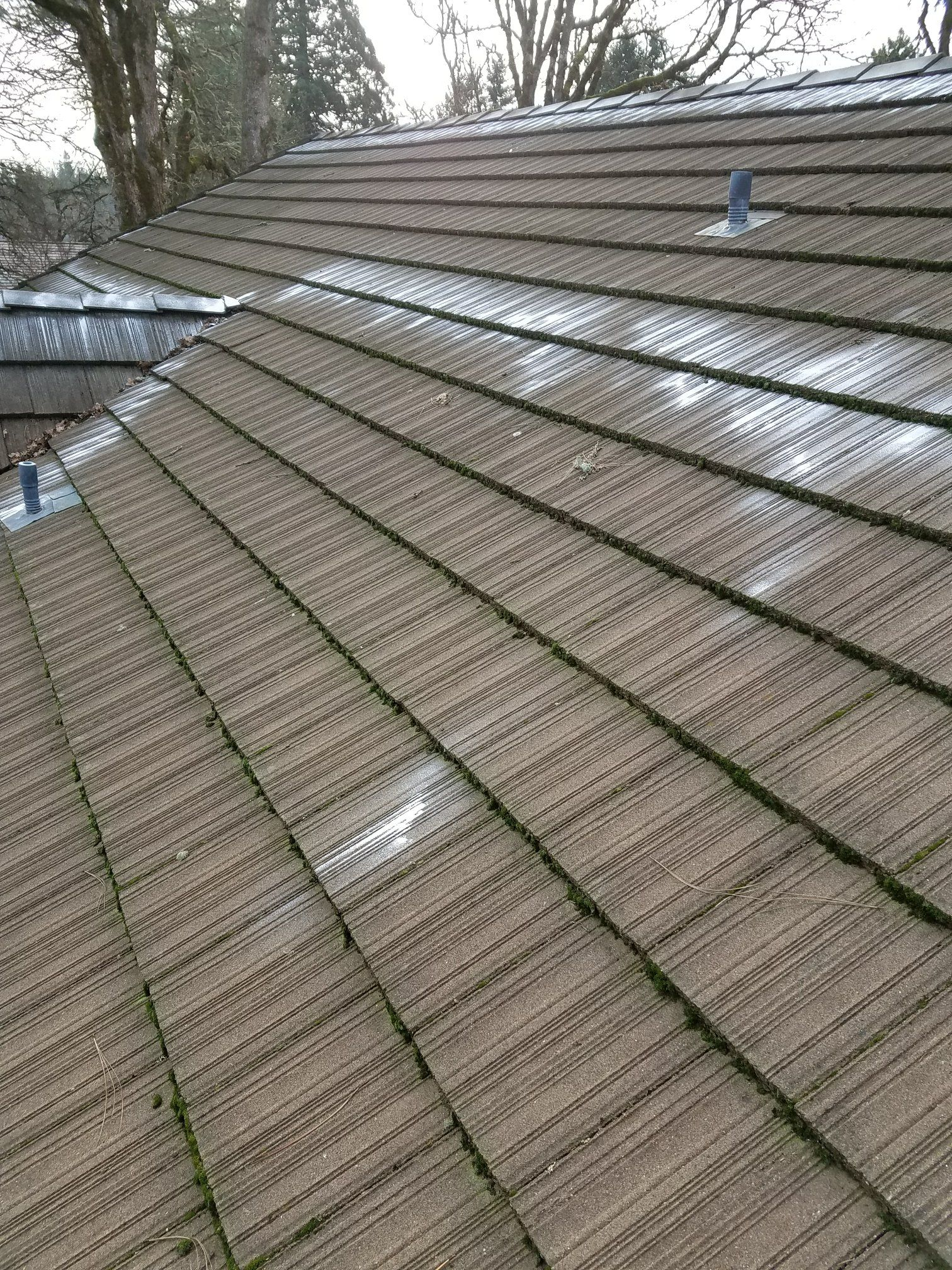 Tile Roof Repair Cleaning Vancouver Wa By Northwest Roof Maintenance Roof Maintenance Roof Repair Home Maintenance