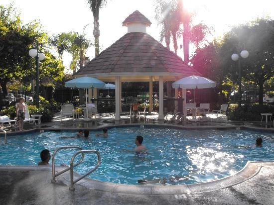 Pool Area Picture Of Candy Cane Inn Anaheim Tripadvisor