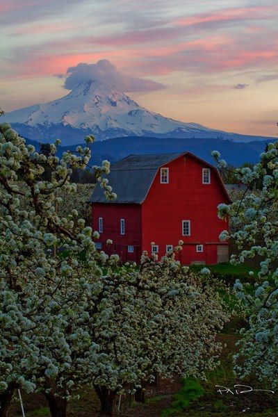 The High Road - Hood River, OR by Paul Christian Bowman, via Flickr