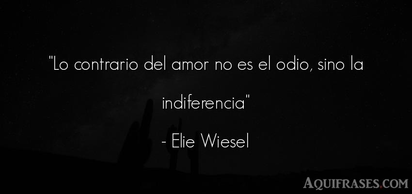 Frases Amor Desamor Odio Frase Elie Wiesel Aquifrases Amor