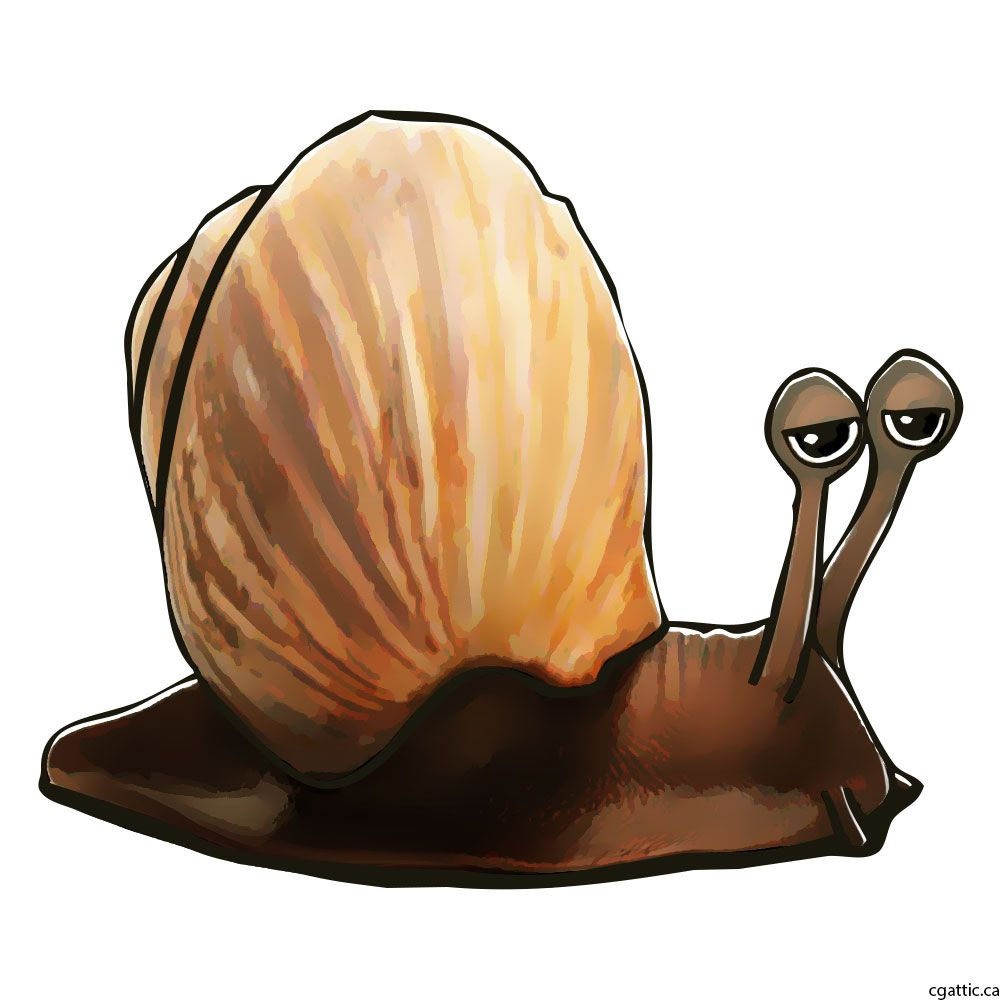 Cartoon snail step 4: detail out the shell and use color enhancement tools  to bring