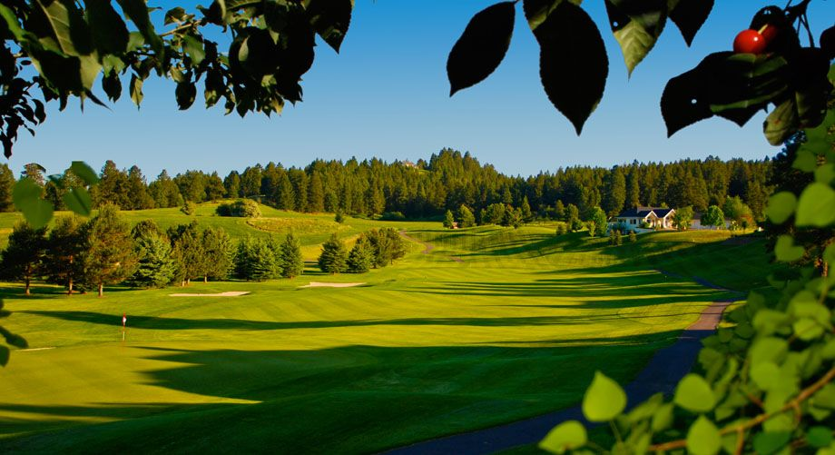 12+ Bigfork montana golf course viral