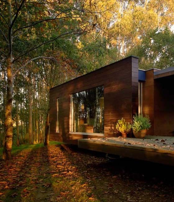 16++ Forest modern house ideas in 2021