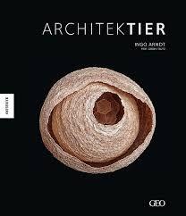 「ingo arndt architektier」的圖片搜尋結果
