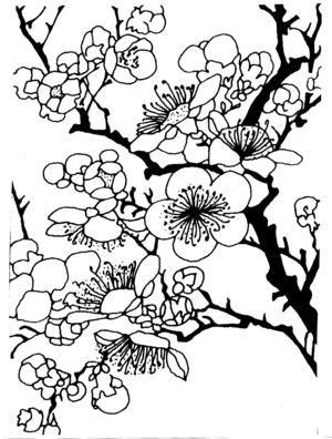 Plum Blossom Silhouette Disegni Idee