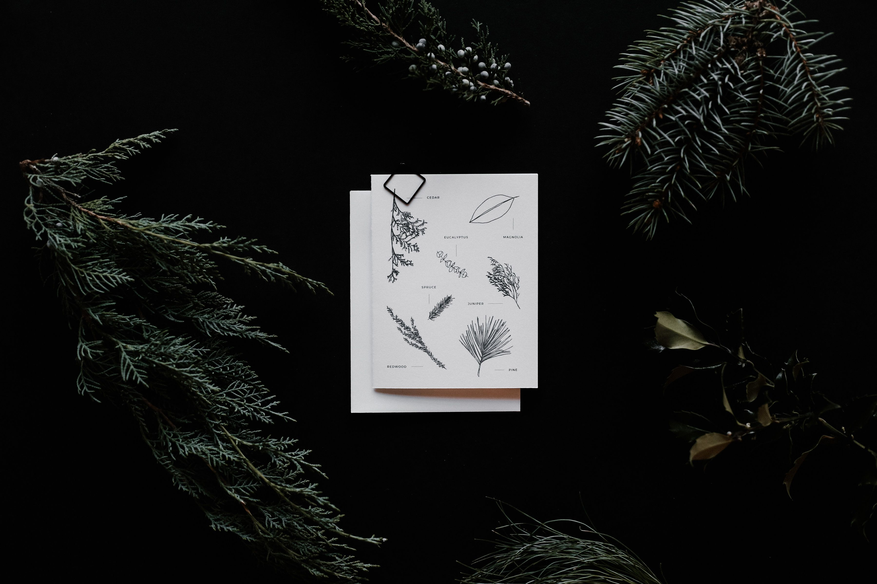 Holiday Greeting Cards By Lauren Nicole Co Stationery