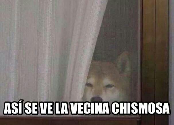 La Vecina Vecinas Chismosas Chismosos Memes En Espanol