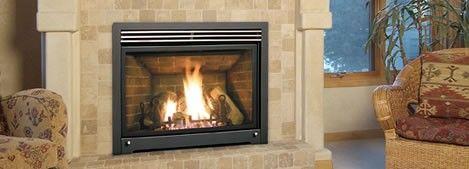 Enviro S40 Gas Stove Gas Fireplace Freestanding Stove Free