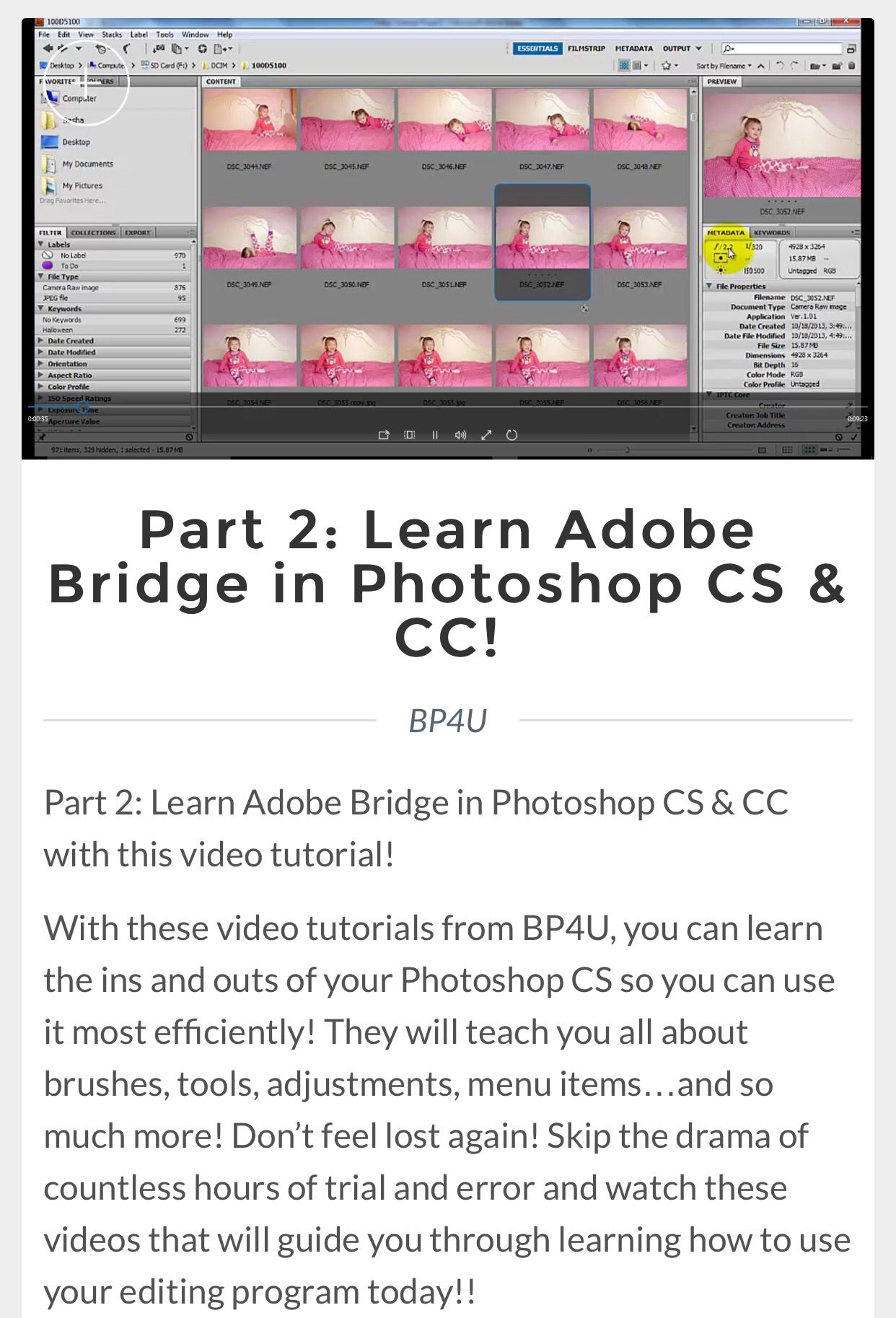 Part 2 Learn Adobe Bridge In Photoshop Cs Cc Software Preset Lightroom Premiere Pro