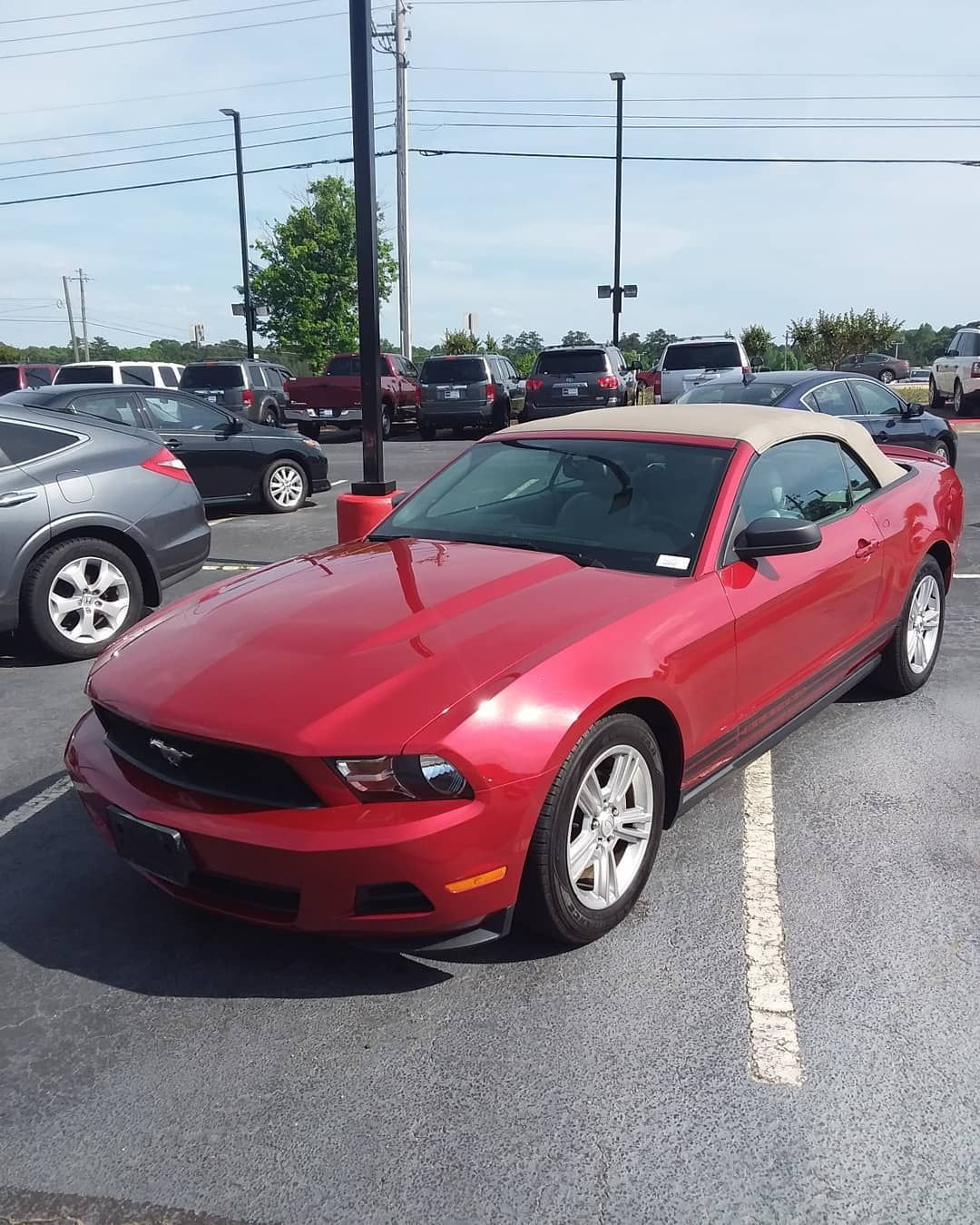 2010 Red Ford Mustang Down Payments are as low as 499 100