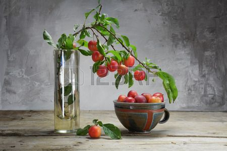 44350644-wild-red-plums-on-a-branch-in-a-vase-and-in-a-pottery-bowl-on-an-old-wooden-table-in-front-of-a-rust.jpg (450×300)
