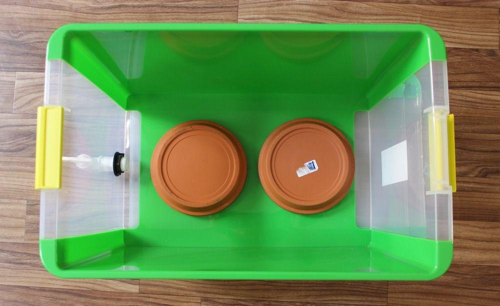 Wurmkiste Wurmcafe Wurmbox Kompost Wurmkompost Anleitung Selber Bauen Wurmer 4 Wurmkiste Anleitungen Wurmkompost