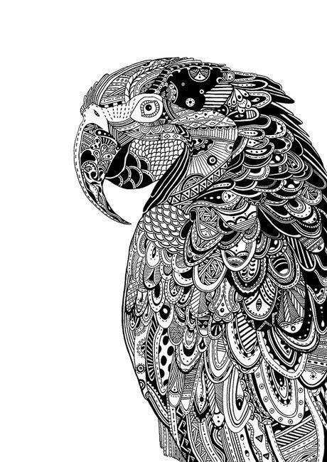 Coloriage perroquet coloriage perroquet pinterest perroquets et coloriage - Dessins de perroquets ...