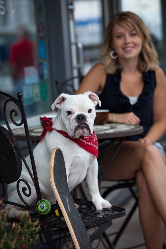 Visit Dog Friendly Lake Geneva Wi Wisconsin Pinterest