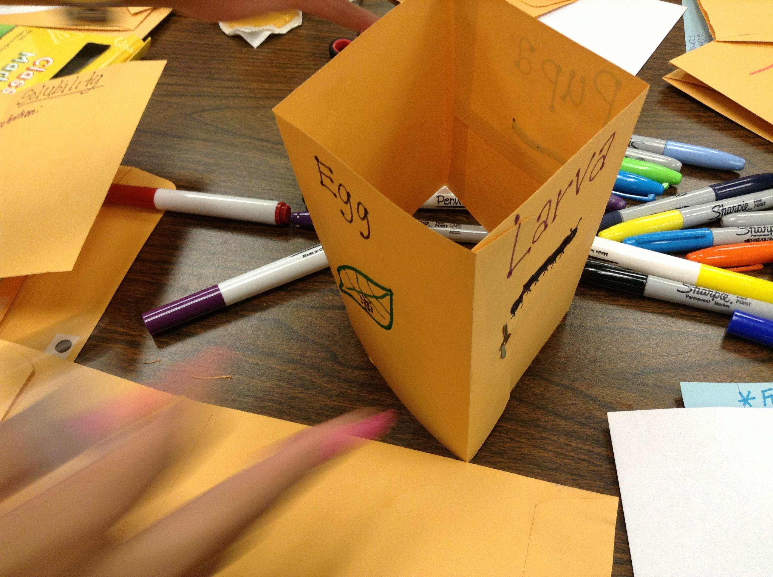 Foldable Square Envelope That Fits Into Merger Envelope